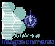 Aula Virtual |  ImagenINCan